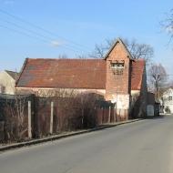 scinawa-polska-4