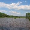 lasy-murckowskie-sobczyki-duze-staw-1