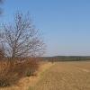 swiete-widok-7