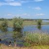 szczedrzyk-jezioro-turawskie-09