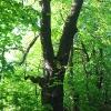 tworkow-aleja-hroza-4