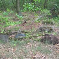 wszewilki-dawny-cmentarz-2.jpg