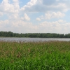 wyry-jezioro-wicie-1