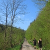 zatwarnica-dolina-rzeki-widok-5