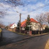 zawonia-ul-wiosenna-2