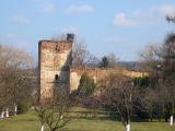 ziemiecice-ruiny-kosciola-2