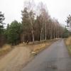 ziemsko-przed-3