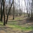 zlotniki-park-zlotnicki-grodzisko-05