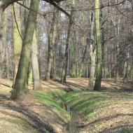 zlotniki-park-zlotnicki-04