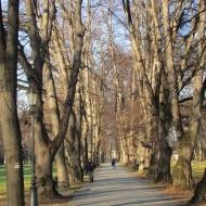 zywiec-park-zamkowy-5