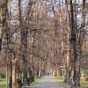 zywiec-park-zamkowy-8