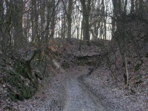 Szlak zielony rowerowy Pierwoszów - Brochocin - Trzebnica