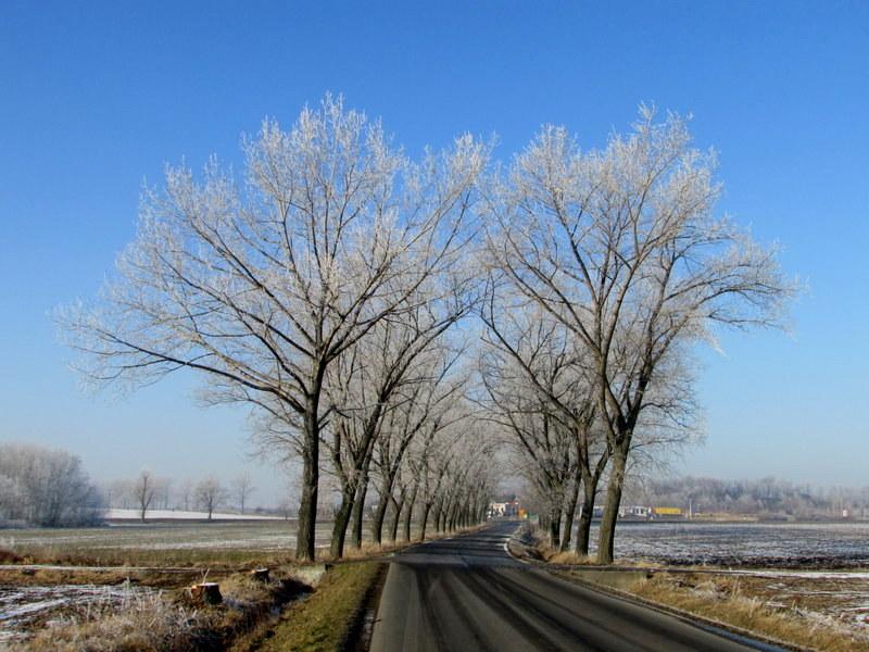 Szlak rowerowy R9 Sobótka Zachodnia - Tworzyjanów - Mietków