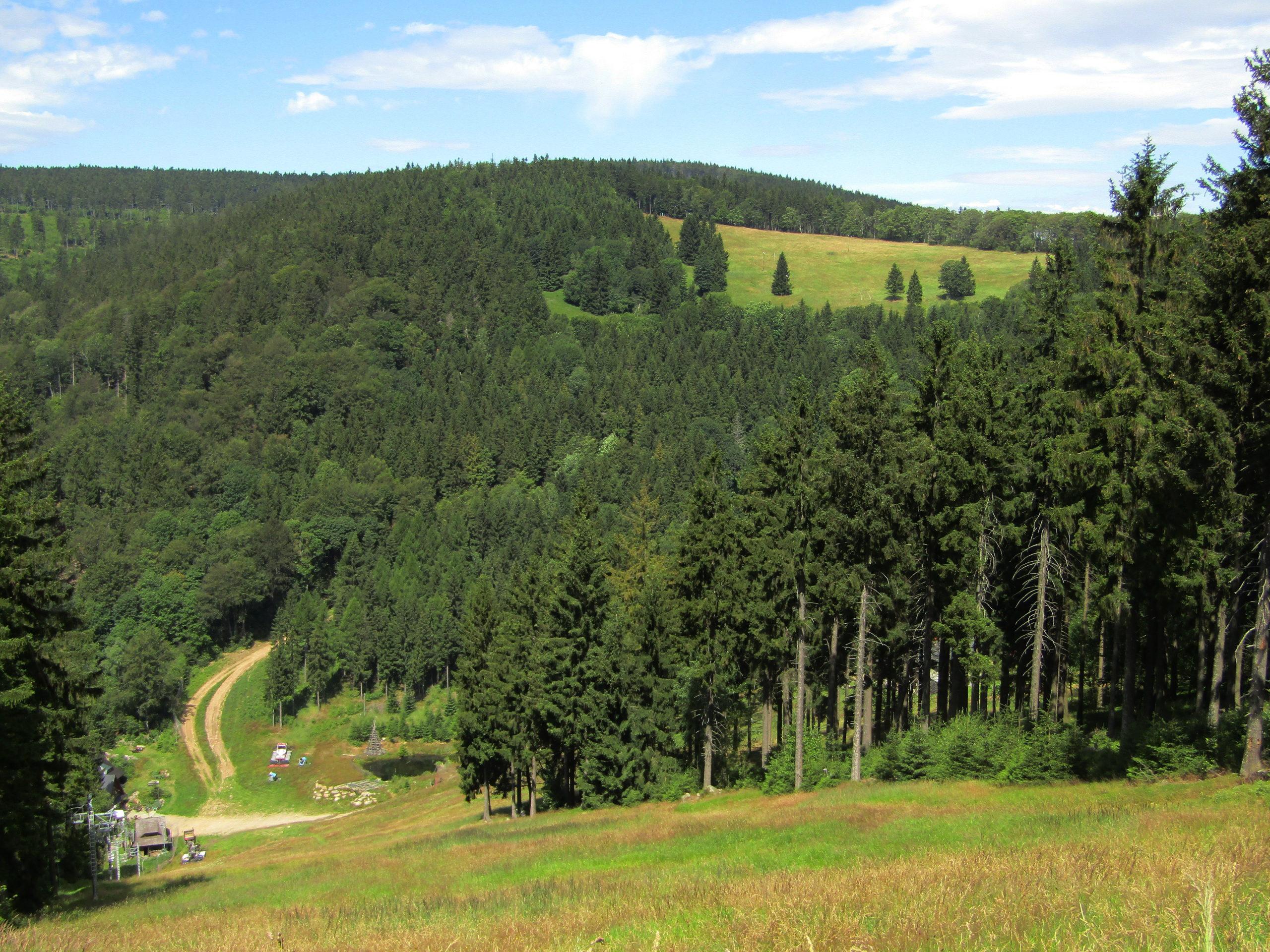 Trasa 1 Świerki Dolne – Sokolec – Bielawska Polanka – Nowa Bielawa