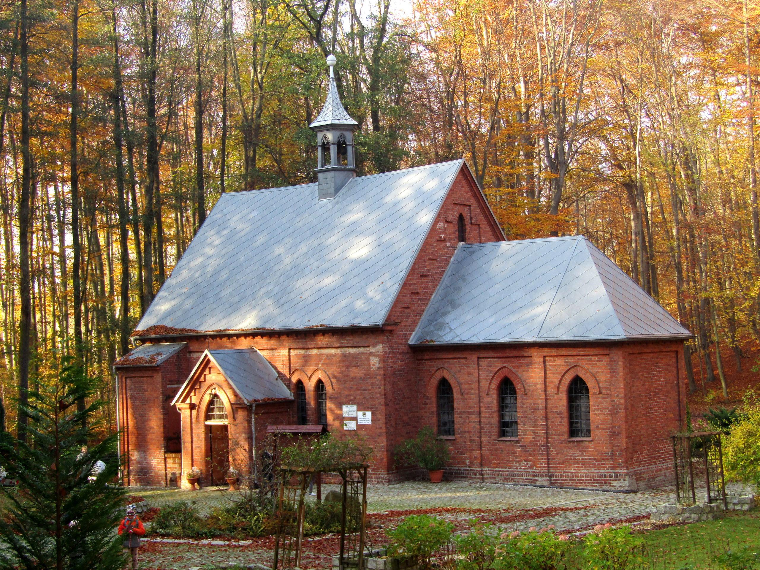 Trasa 29 Trzebnica – Winna Góra – Las Bukowy – Kaplicznik – Trzebnica